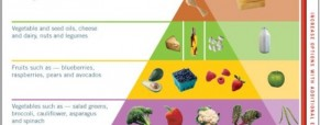 Atkins Diet Weight Loss Programs Changed The Food Pyramid